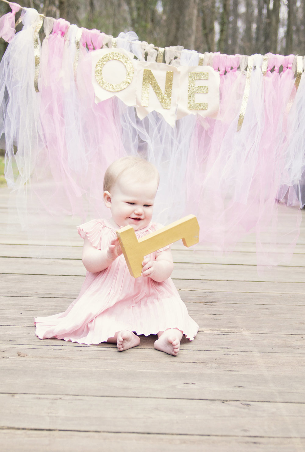 greensboro-nc-childrens-photographer-first-birthday-milestone3.jpg