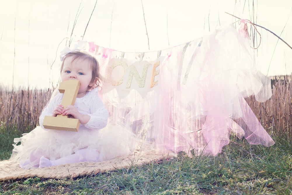 Greensboro-NC-milestone-first-birthday-newborn-Photographer