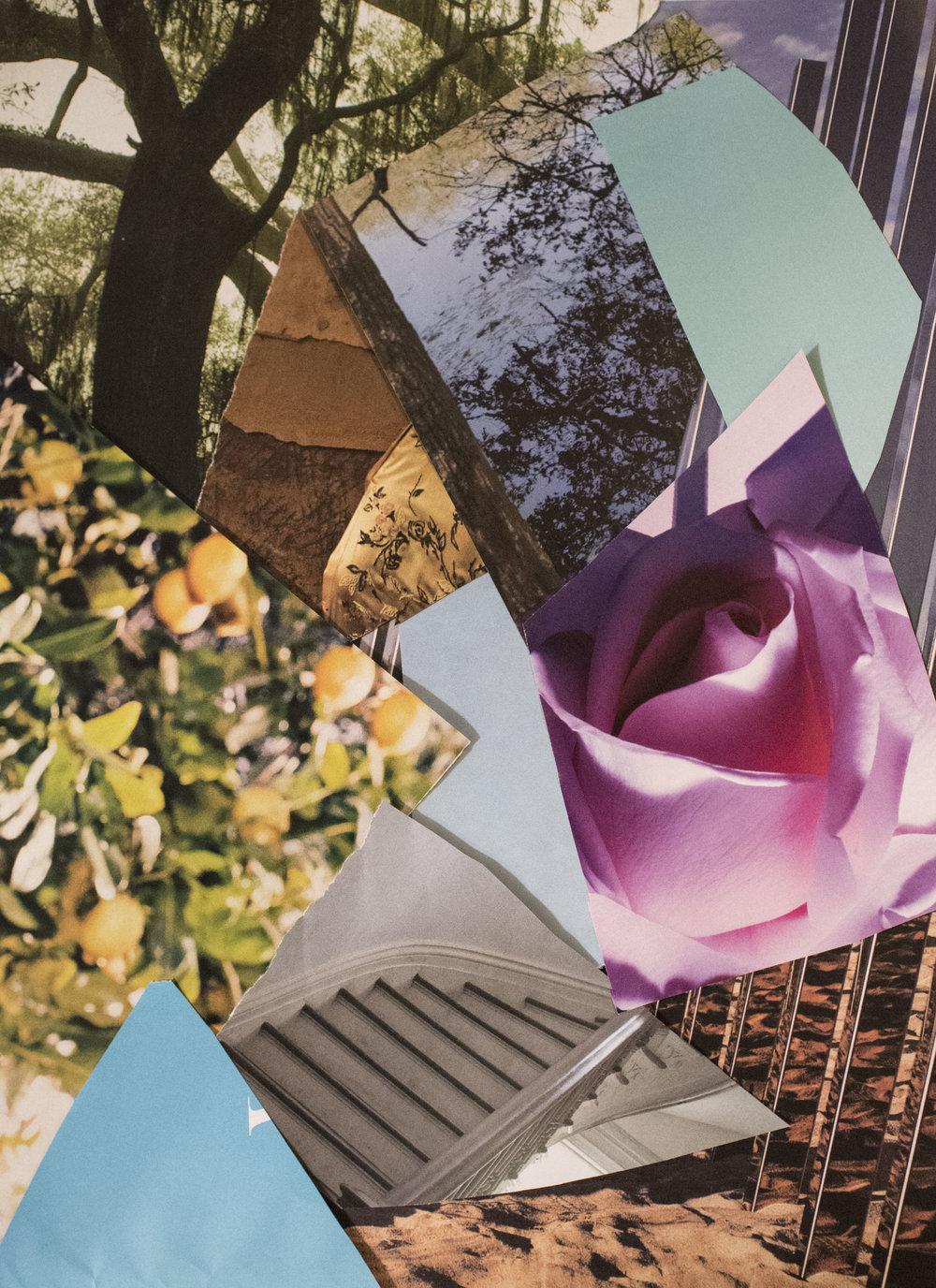 collagesss001.JPG