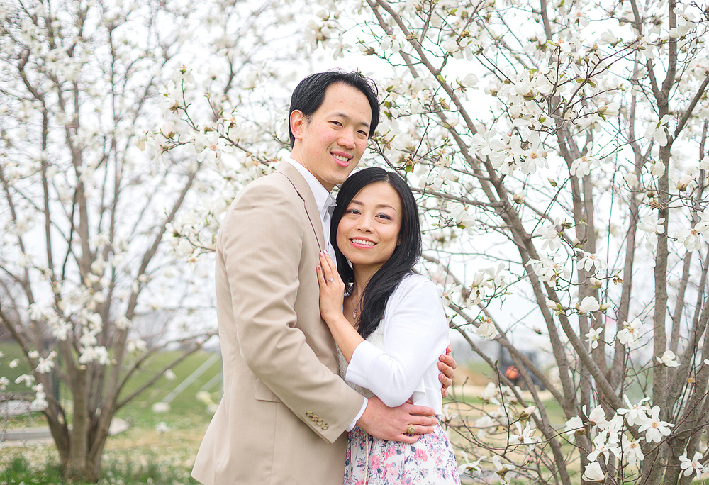 DC Cherry blossom festival engagement session
