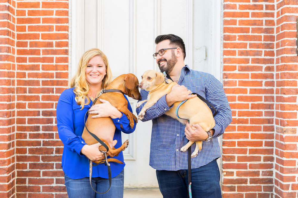 old town alexandria engagement photos with dogs