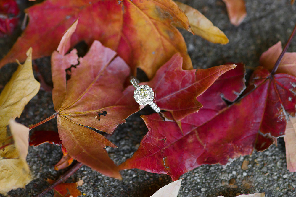 Engagement ring in fall leaves with halo