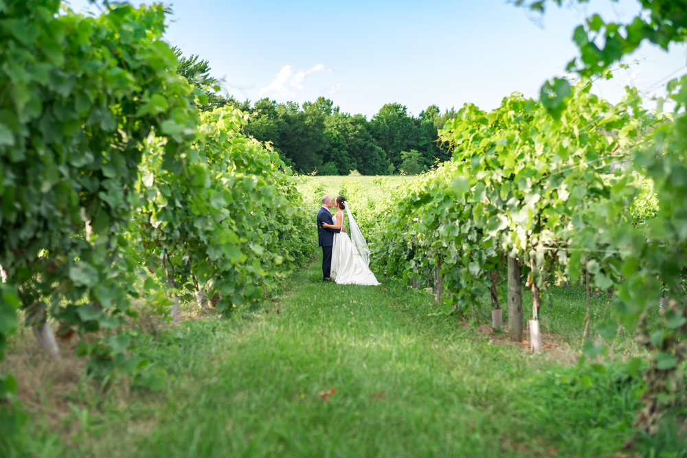Springfield Manor vineyard wedding photos in maryland by jessica nazarova
