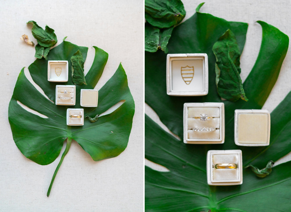 The Mrs Box ring boxes in Margaery ivory single and double by jessica nazarova