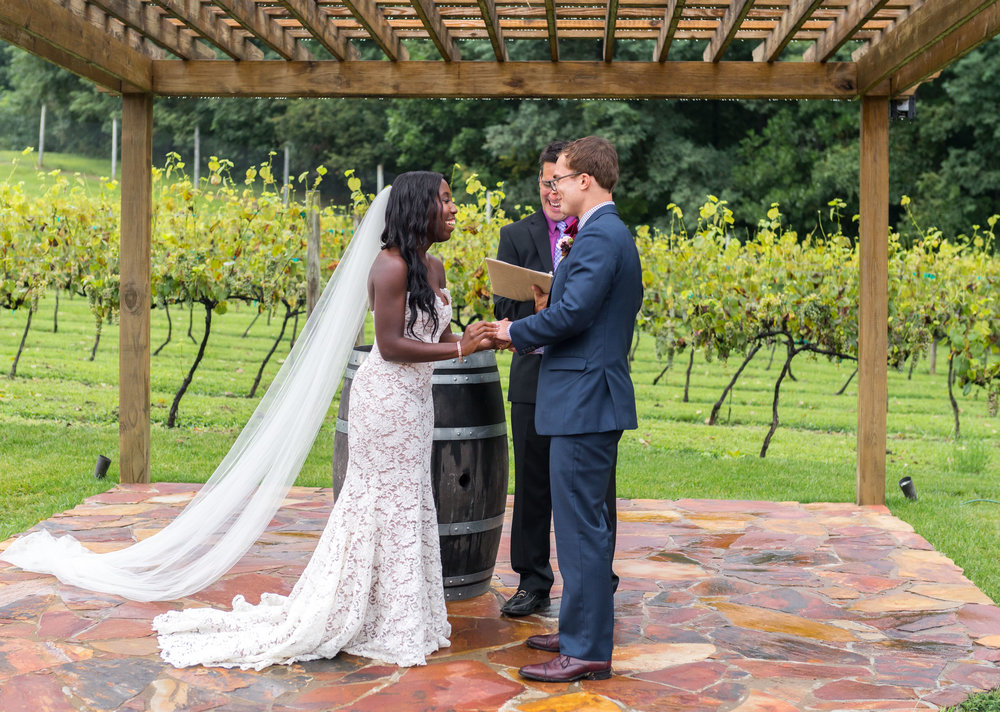wedding photos at running hare vineyard