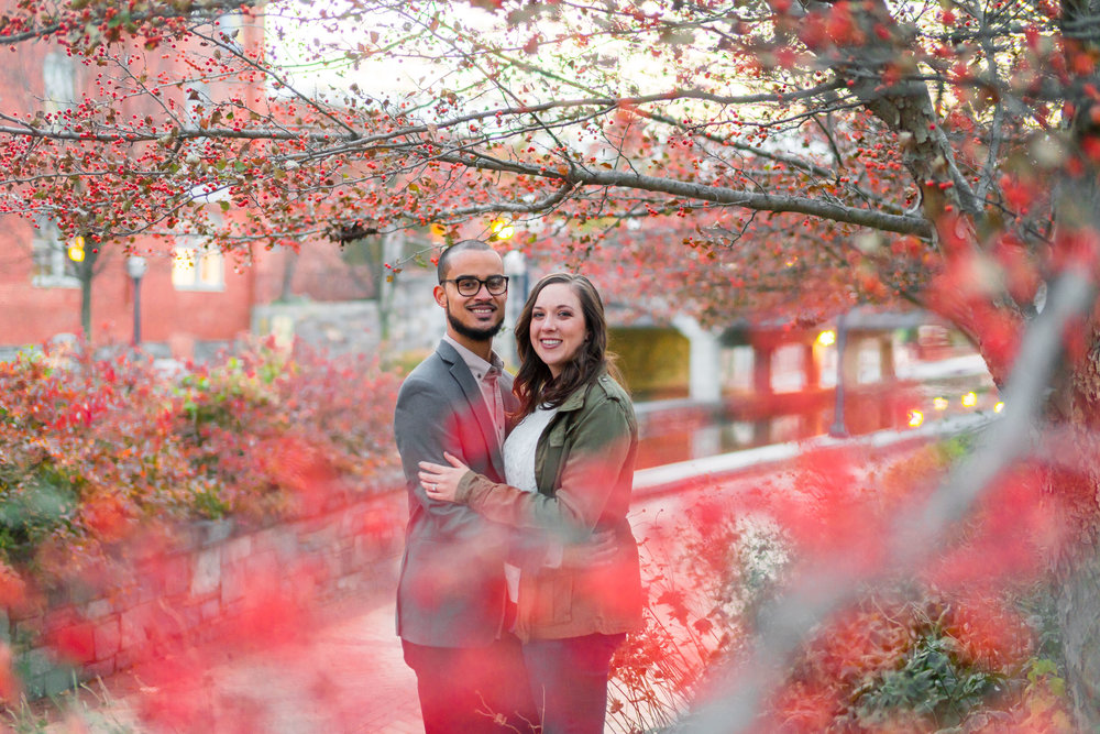 Red berries holiday engagement photos