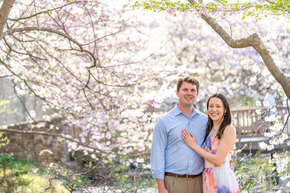 Spring cherry blossoms at Meadowlark Botanic Garden
