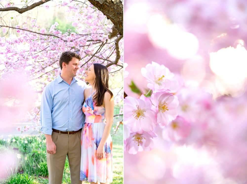 Bride and groom standing in cherry blossoms at Meadowlark Botanical Gardens