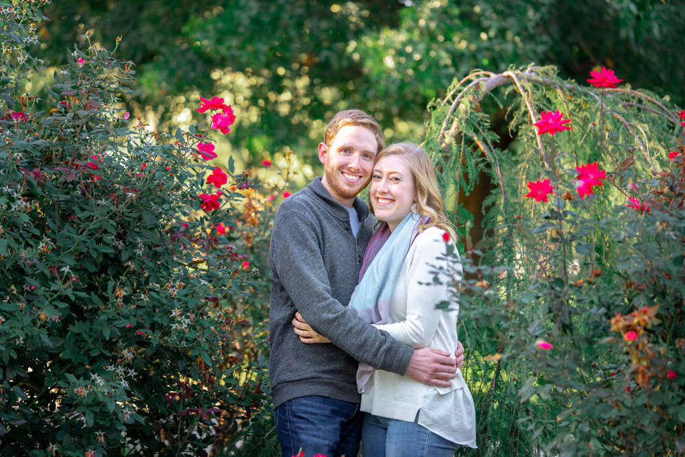 Engagement photos in the rose bushes at Federal Hill Park in Baltimore