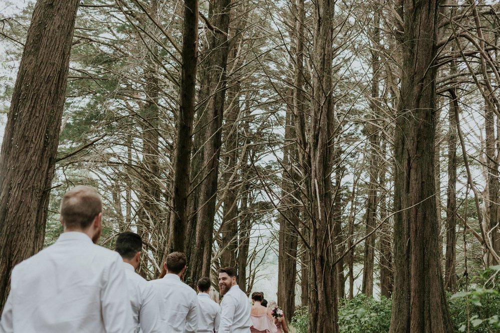 Bridal party walking through the pine forest