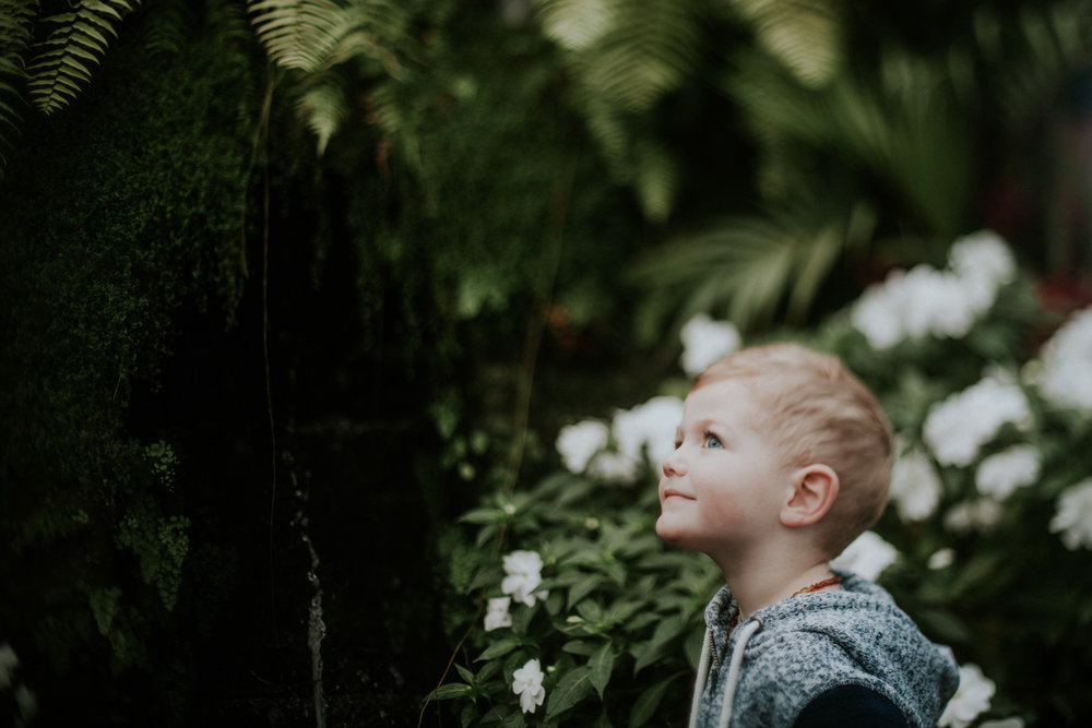 Portrait of toddler exploring indoor gardens, portrait ideas
