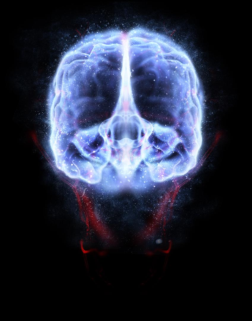 brain_web.jpg