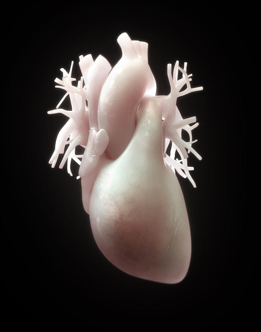 heart_web.jpg