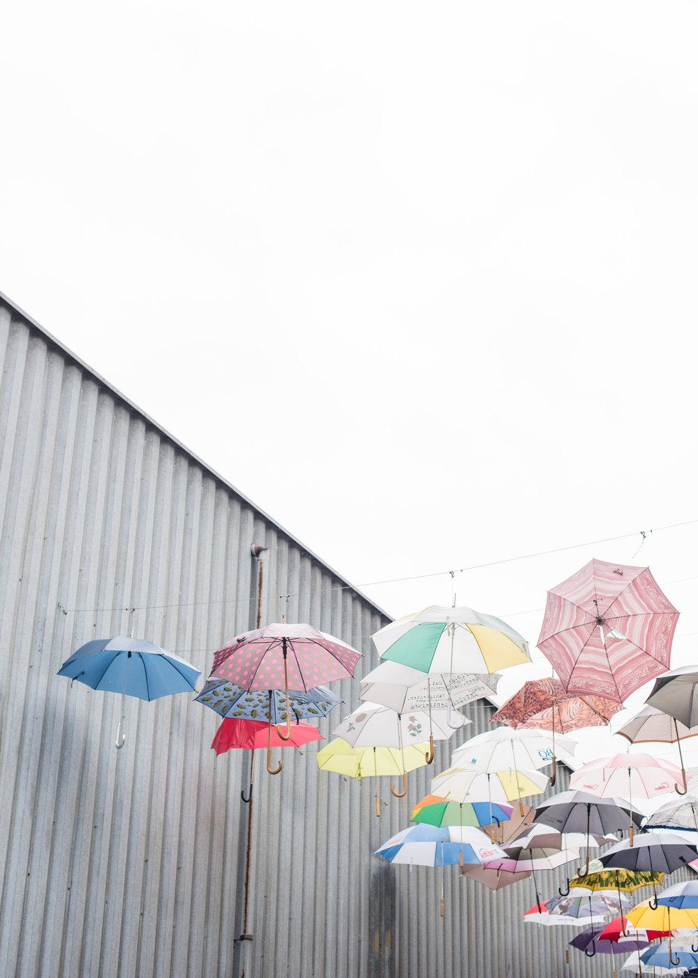 Gerold Cuchi Umbrellas Carley Rudd Travel Photography