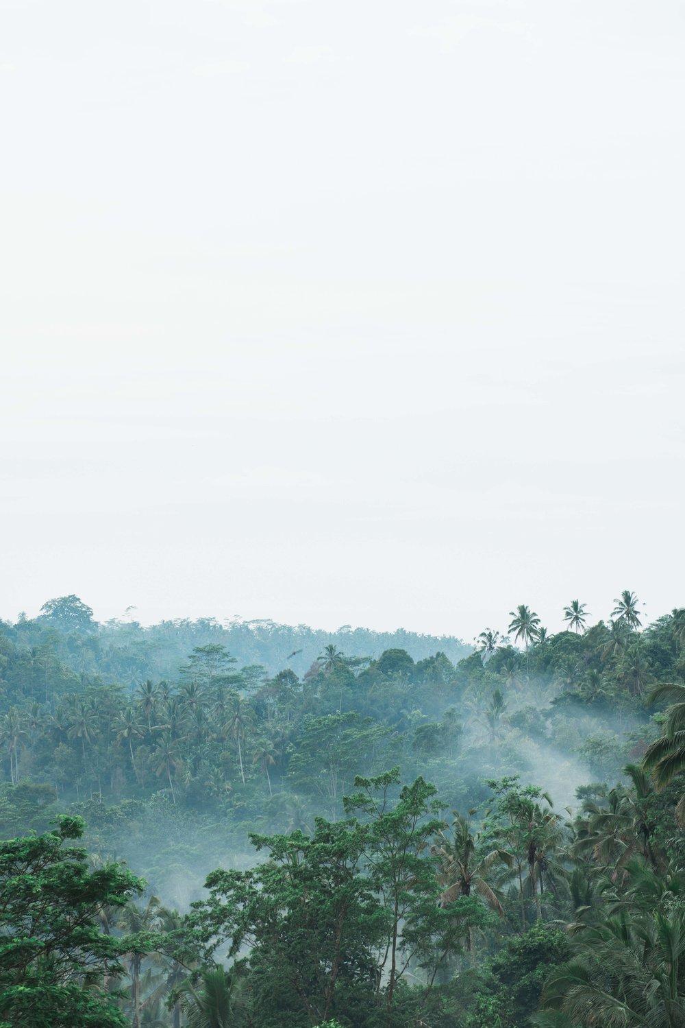 CarleyRuddPhotography_PadmaResortUbudBali