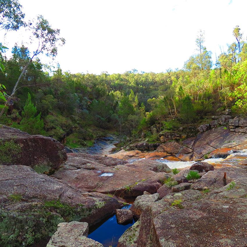 Morning walks to Woolshed Falls