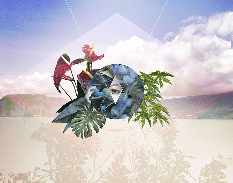 PlantsCollage-web.jpg