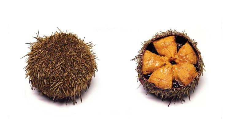 Sjöborre äter man gärna och mycket av i Medelhavet, Chile, Korea och Japan. En unik smak, där uni i unik är det japanska namnet på det lilla djuret!