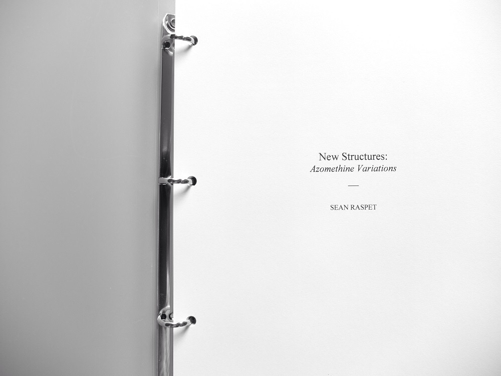 New Structures: Azomethine Variations, Sean Raspet, 2015