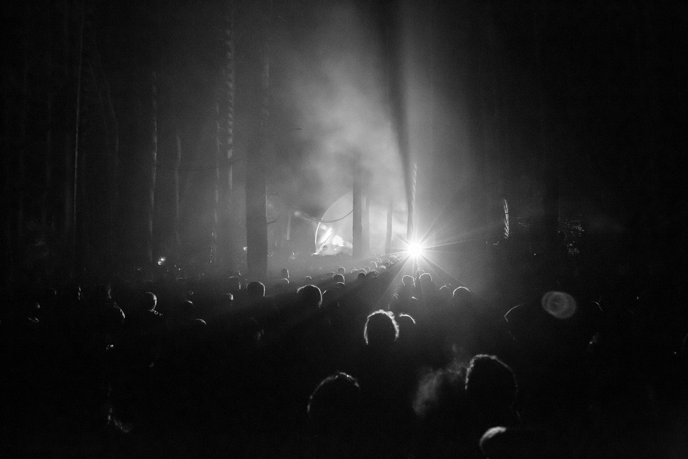 Joe Clarke, photographer, Bristol, Beat Herder, woods