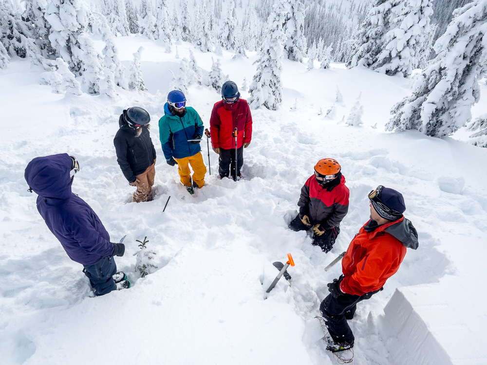 Avalanche Awareness Gap Semester