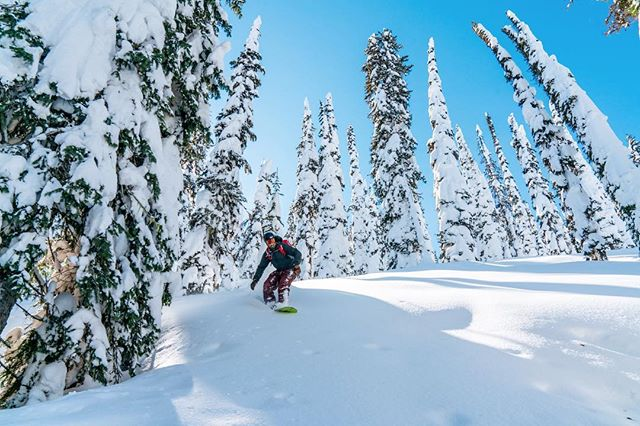 Student Athlete @cwcullen finding the freshies at @skiwhitefish 📸: @t_brower