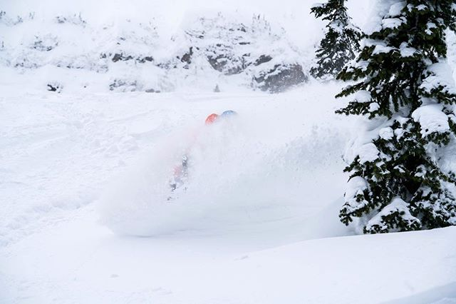 What a sleeper powder day today turned out to be! 📸: @t_brower
