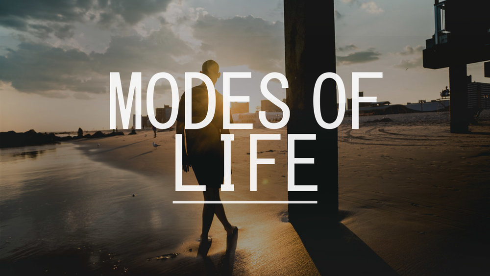 Modes of Life - Experimental Video