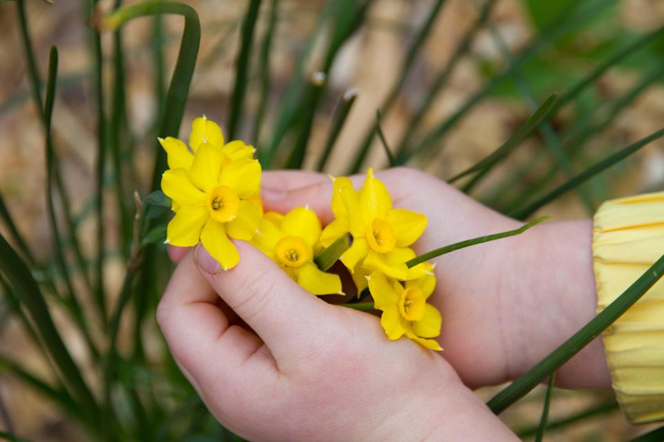 KB_spring-9326.jpg