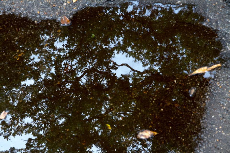KB_puddle-3515.jpg