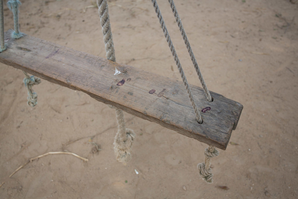 tree_swing_by_tracks-3270.jpg
