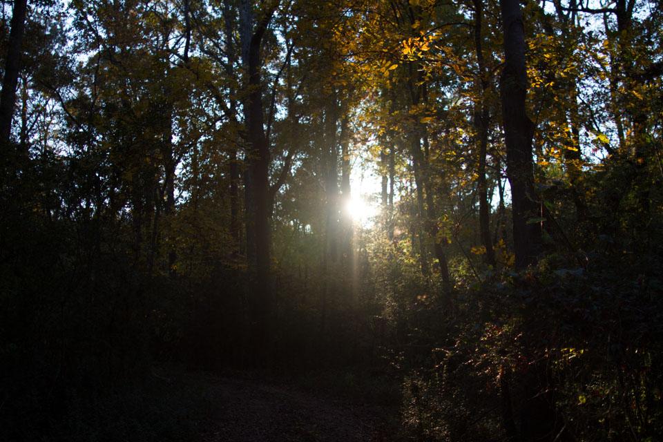 KB_dusk-1565.jpg