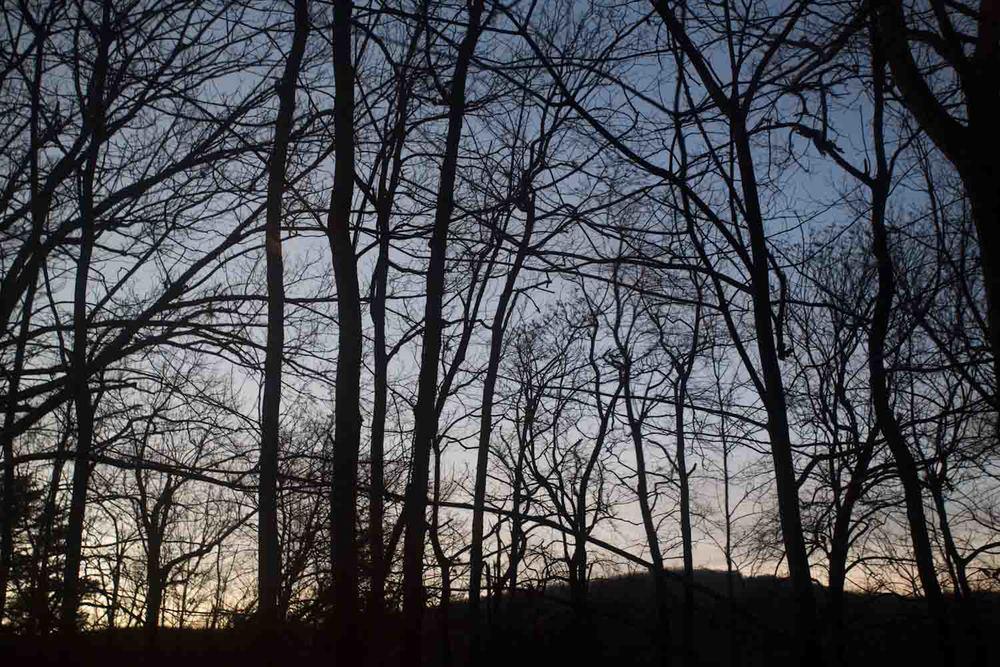 winter lines-4815.jpg