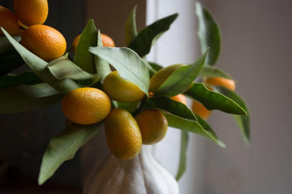 kumquats-5613.jpg