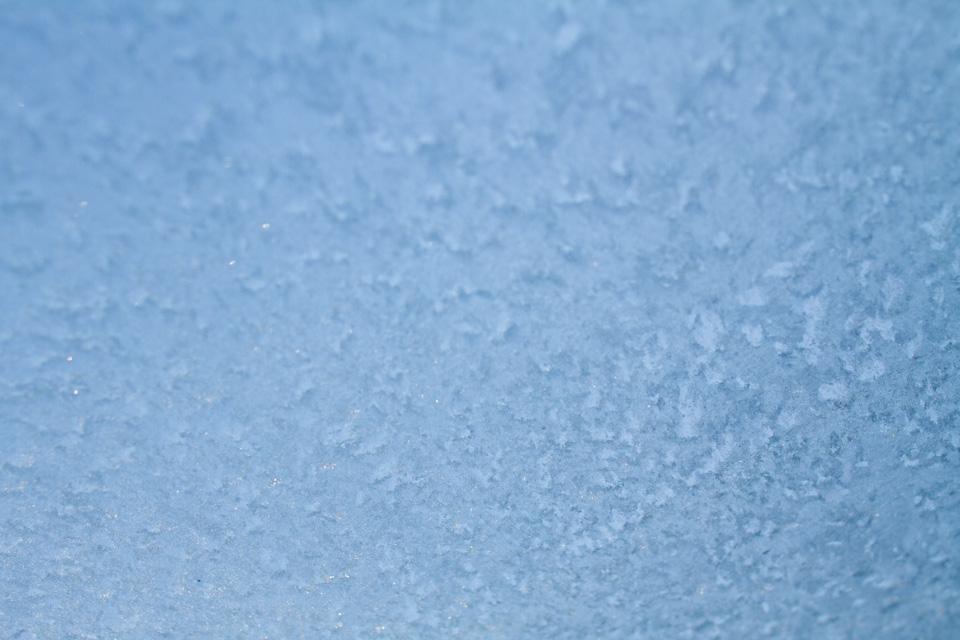 KB_frost-3905.jpg