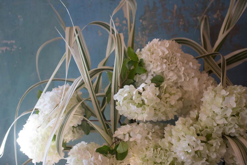 viburnum and grasses-7368.jpg