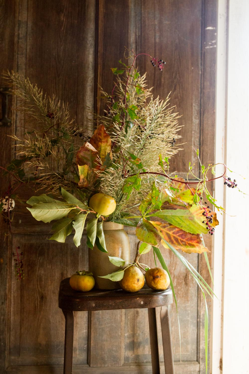 seasonal_bloom_fall fruits and grasses-4469.jpg