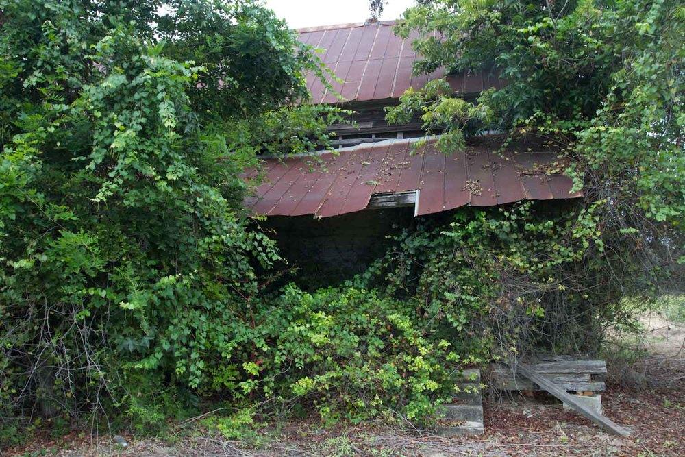 lakeland_shack-1735.jpg