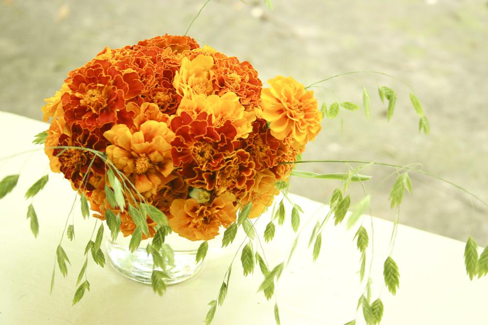 flora-.jpg