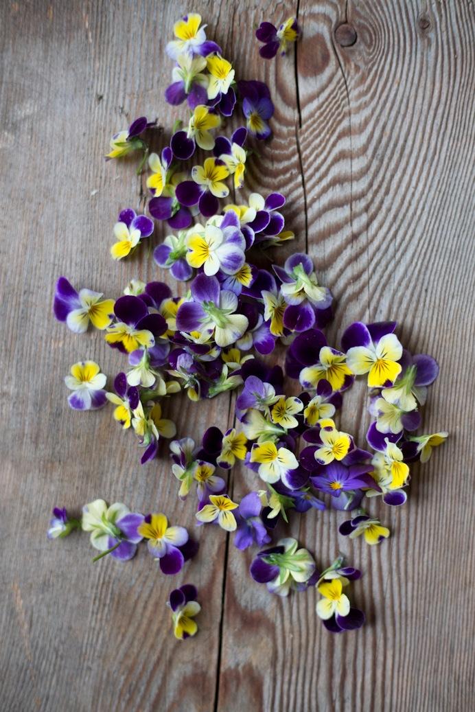 flowerpotluck_ra1.jpg