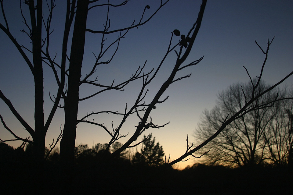 HH-sunsets-6.jpg