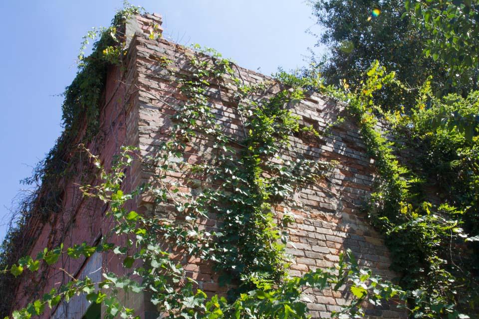 KB_oldtownbuildings-1219.jpg