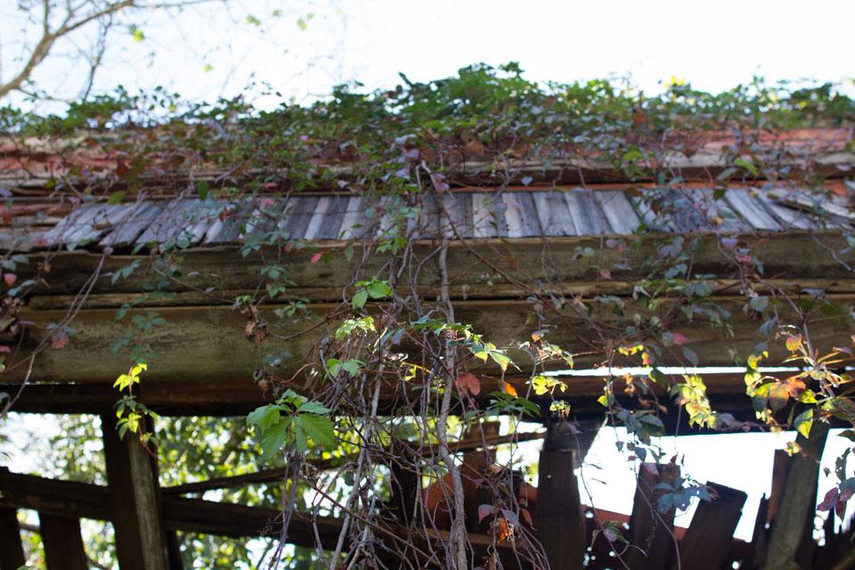 KB_oldtownbuildings-1212.jpg