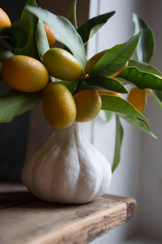 kumquats-5614.jpg