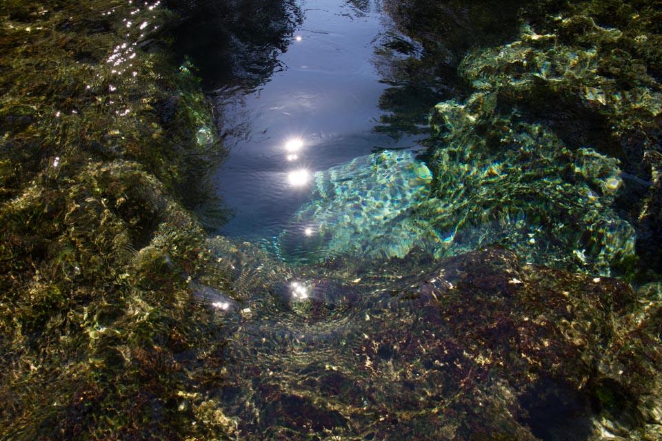 KB_chassahowitzka-river-springs-5956.jpg