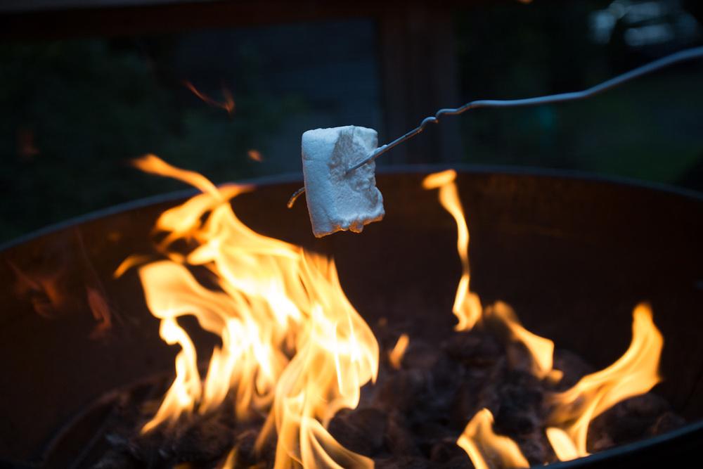 marshmallows-2213.jpg