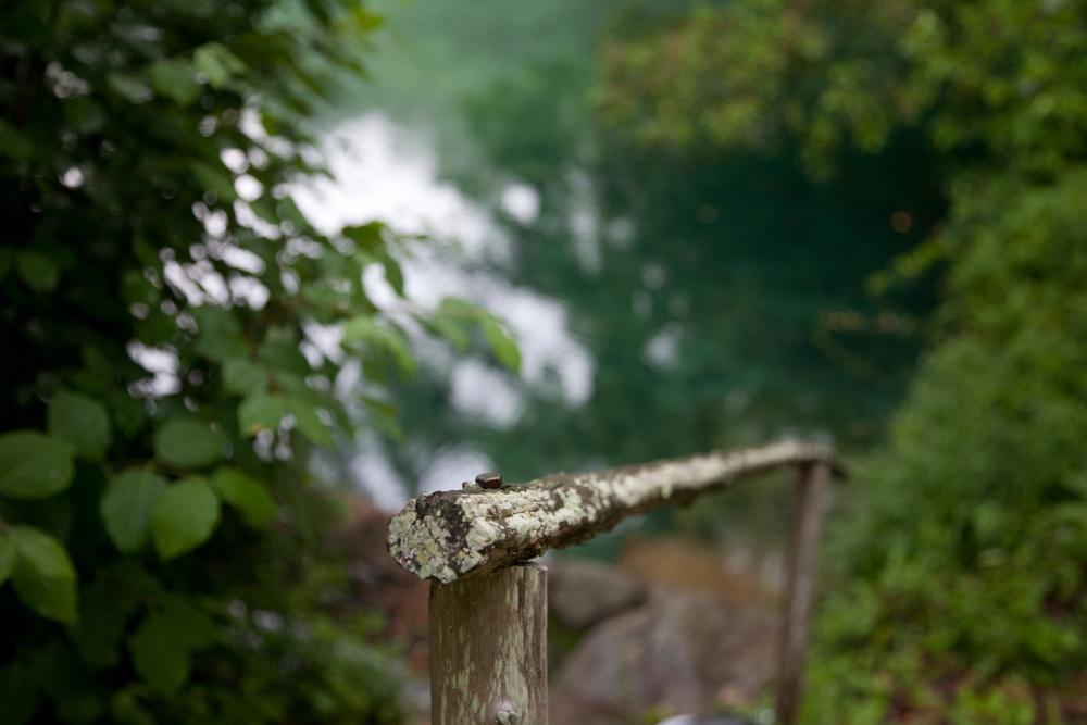 handrail-9411.jpg