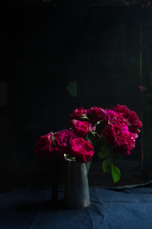 red roses-9776.jpg