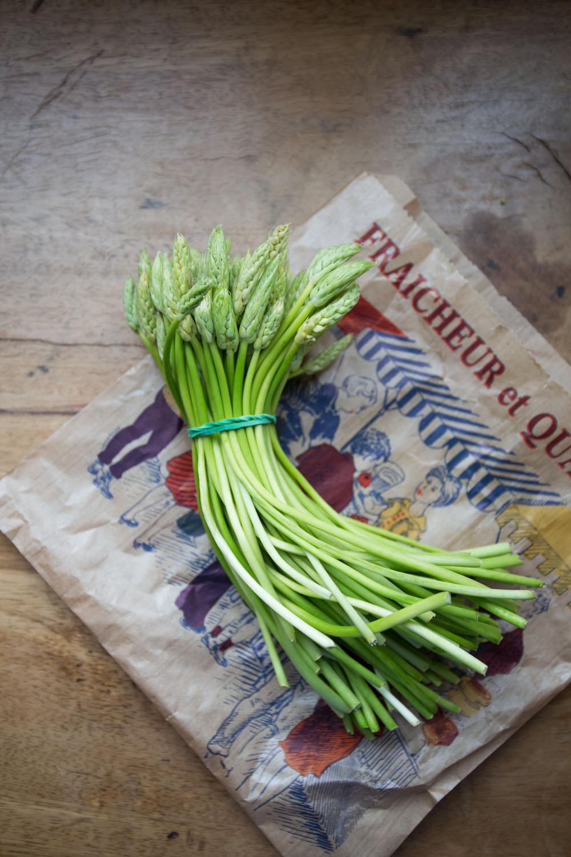 france, wild asparagus-2850.jpg
