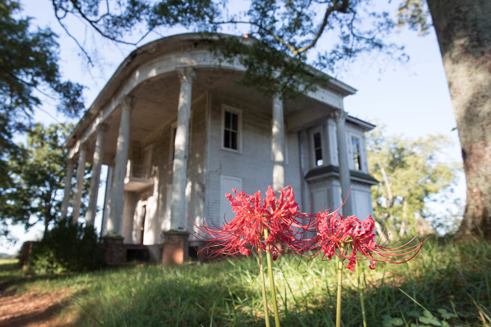 nolan house-6648.jpg